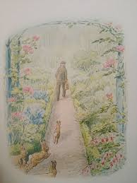 mr mcgregor s garden rabbit 323 best beatrix potter and friends images on
