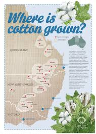 where is it grown cotton australia