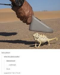 Lizard Meme - lizard d e t e c t e d dafuq know your meme