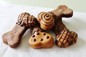 8 gourmet dog treats even a human would eat