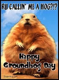 groundhog glitter graphics gifs memes