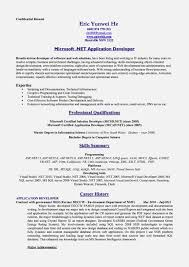 good standard resume format 2017 u2013 resume template for free