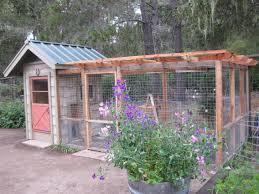 a chicken coop that enhances the garden central coast gardening