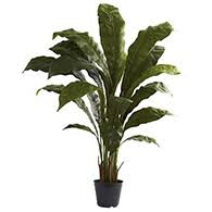 silk plants artificial plants silk plants plants artificial house