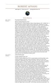 Ceo Resume Sample Cio Resume Example Cio Sample Resume Chief Information Officer