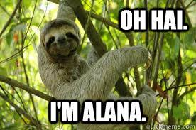Alana Meme - oh hai i m alana alana sloth quickmeme