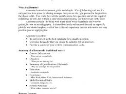 What Should Be In The Summary Of A Resume Chic Inspiration How To Make A Resume With No Work Experience 7