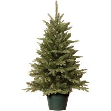 best live trees forlergies artificial fresh