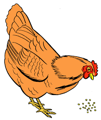 hen with eggs clipart clipart panda free clipart images
