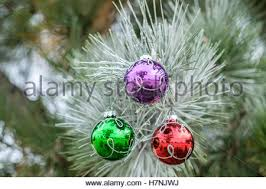 ornaments hanging on a evergreen tree outside