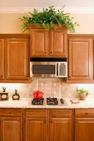 Decorate Top Of Kitchen Cabinets Kitchen Greenery Above Cabinets Decorations For Attractive House