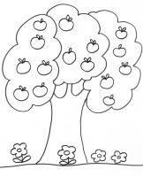 Coloriages sur les arbres  Tête à modeler