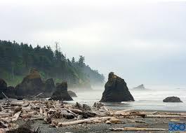 Washington beaches images Washington coast washington state coast jpg