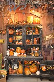 Fall Backyard Party Ideas by 25 Best Pumpkin Display Ideas On Pinterest White Pumpkins