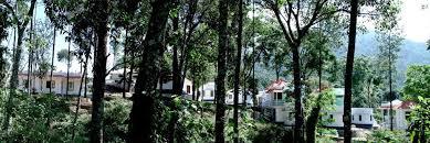 Munnar Cottages With Kitchen - spice villas holiday resort santhanpara munnar best deal for