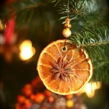 best 25 orange ornaments ideas on dried oranges