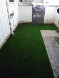 dog artificial turf archives cascade greens