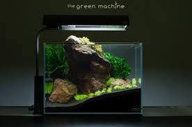 nano aquascape red rock aquascape journal by james findley the green machine