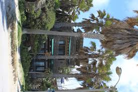 venice beach california maven u0027s photoblog