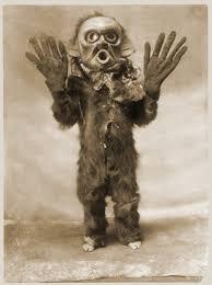 Krampus Costume Random Sunday Morning Mask Pic Merry Krampus Blood Curdling