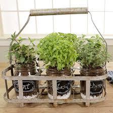 Indoor Container Gardening - portable indoor herb garden