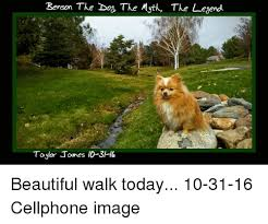 Benson Dog Meme - benson the dog the myta the legend taylor tames id 3h6 beautiful