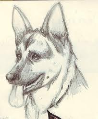german shepherd head sketch by twime777 on deviantart