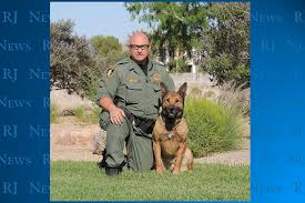 belgian shepherd killed one metro police dog killed another hurt in northwest valley bee