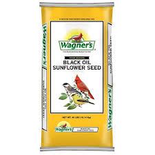 best 25 black oil sunflower seeds ideas on pinterest black