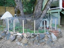 Backyard Quail Pens And Quail Housing by Completed Quail Colony Frühlingskabine Micro Farm