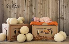 photography props more newborn photography props newborns posing bruises and