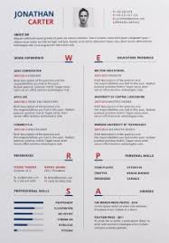 cv resume format 36 beautiful resume ideas that work