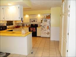 Cost New Kitchen Cabinets Kitchen Modern Kitchen Design Kitchen Remodel Cost Cabinet