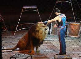 Barnes And Bailey Circus Going Dark Ringling Bros And Barnum And Bailey Circus Brings Down Cu