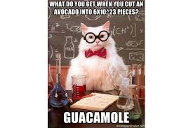 funny mole day jokes and humor