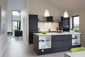 Kitchen Design Houzz Houzz Grey Kitchen Cabinets All About Grey Kitchen Cabinets U2013 My
