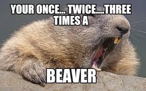 Gopher Meme - meme creator war beaver meme generator at memecreator org