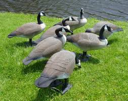 top 10 kitschy lawn ornaments