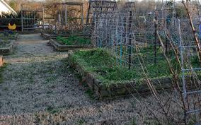 confessions of a vegetable garden lazy b farm