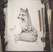 pencil drawing illustration art retro vintage old fox red