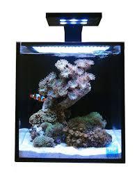 Nano Aquascaping The 25 Best Nano Aquarium Ideas On Pinterest Betta Aquarium