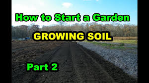 how to start vegetable garden or food forest for beginners with
