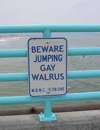 Walrus Meme - beware jumping gay walrus meme corps
