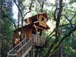 joyous tree house plans together with small shape n tree house