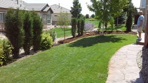landscaping and xeriscaping in boulder don king landscaping