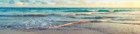 Cottage Rentals Virginia Beach by Sandbridge Vacation Rentals Sandbridge Sandbridge Vacation
