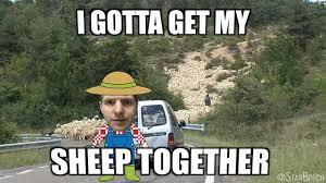 Stan Meme - stan botch and a flock of sheep meme i gotta get my sheep