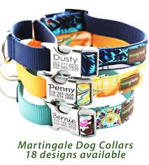 personalized collars for dogs engraved buckle collars