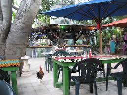 Backyard Restaurant Key West 208 Best Key West Living Images On Pinterest Florida Keys Key