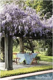 Backyard Landscape Design Ideas by Backyards Fascinating Small Backyard Landscaping Ideas Bing